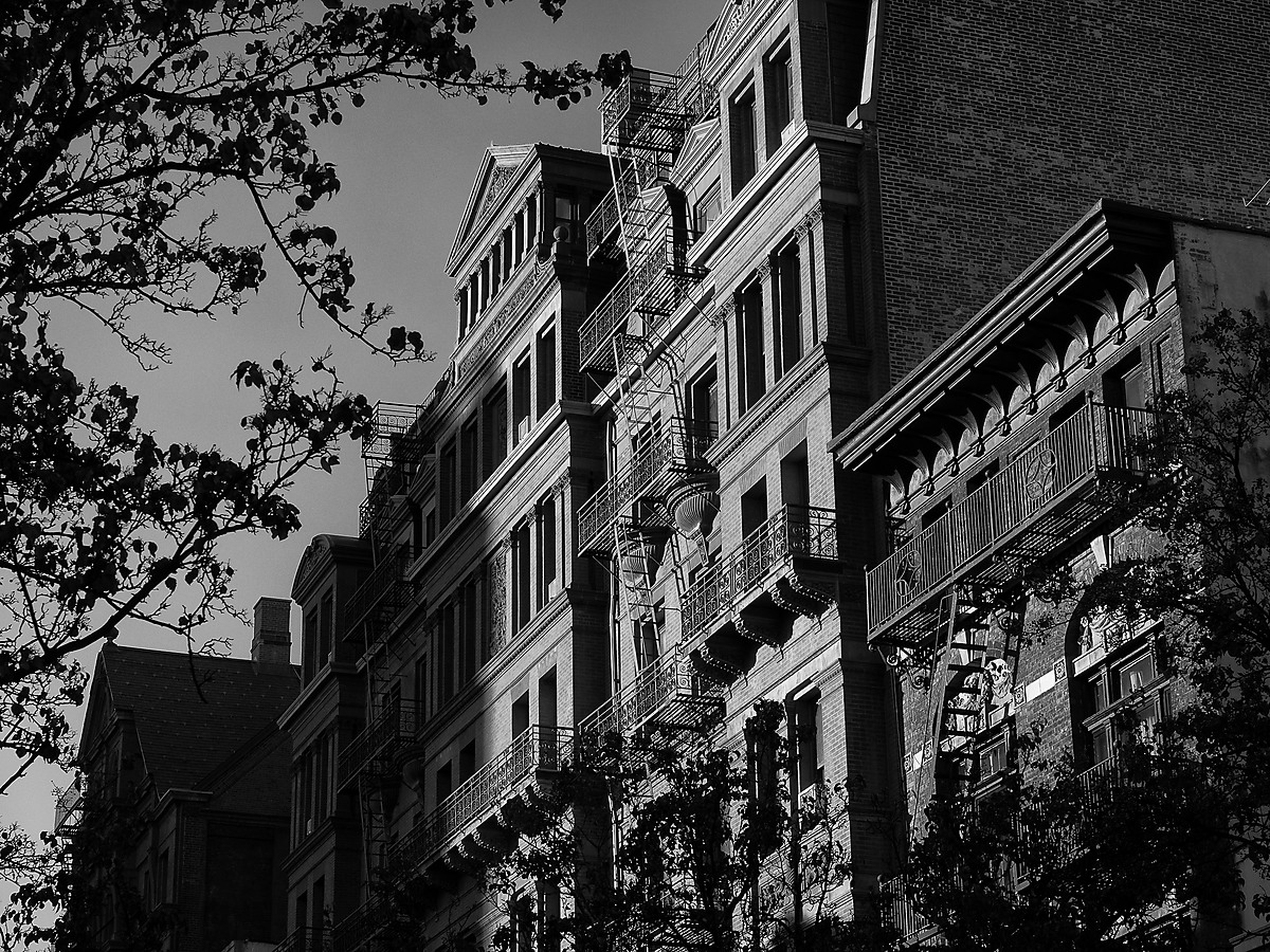 Late Afternoon Light on Brick Building in Brooklyn Heights
