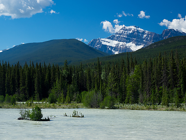 View of Mt Edith Cavell across the Athabasca River