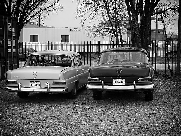 Two Classic Mercedes