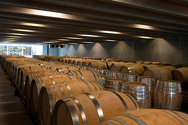 Barrel Room, Peregrine Wines